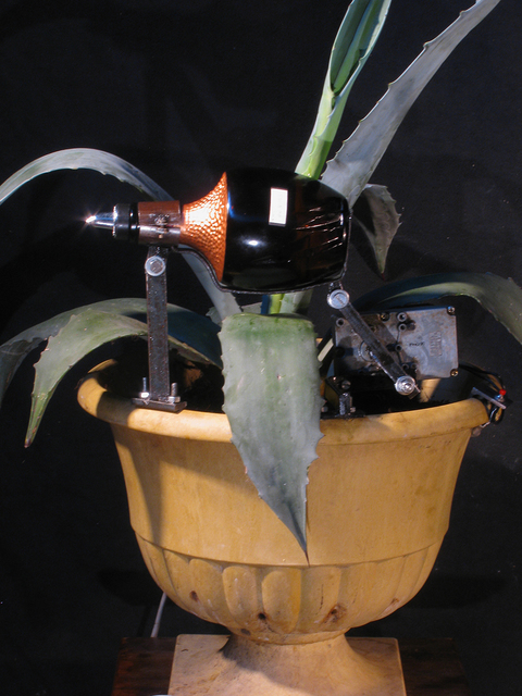 , 'Tequila Agave Pouring Machine,' 2015, Catharine Clark Gallery