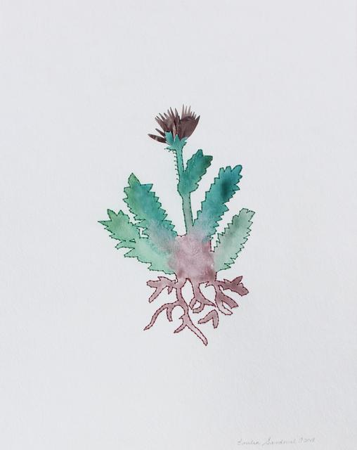 , 'Huitzquilitl vosages ,' 2018, Galería Quetzalli