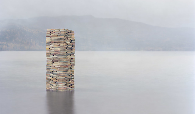 , 'Unintended Consequences of Us, 2015,' 2014, Galerie Olivier Waltman | Waltman Ortega Fine Art