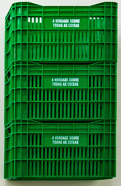 , 'A verdade sobre todas as coisas (versão caixa) [The truth about all things (box version)],' 2011-2016, Sé Galeria