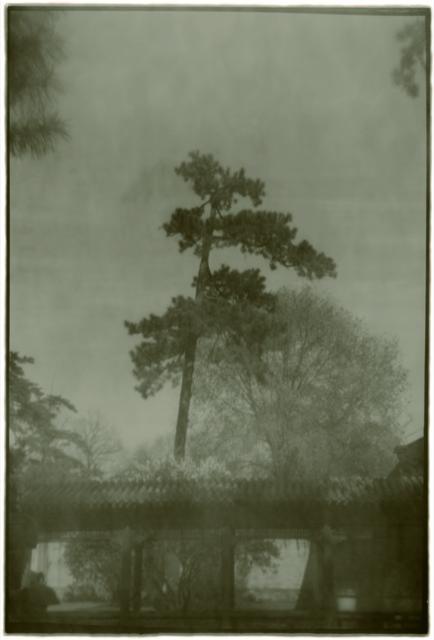 , 'Summer retreat No.1,' 2011, see+ Gallery