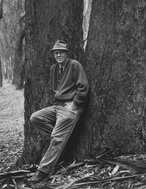 , 'Wynn Bullock, Photographer 2, 1966,' c. 1979-1999, Ryan Gallery