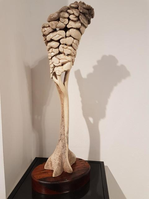 Carl Roberts, 'Ghostly giants that pass through Pierneefs plain', Sculpture, Bone (Elephant), The Melrose Gallery