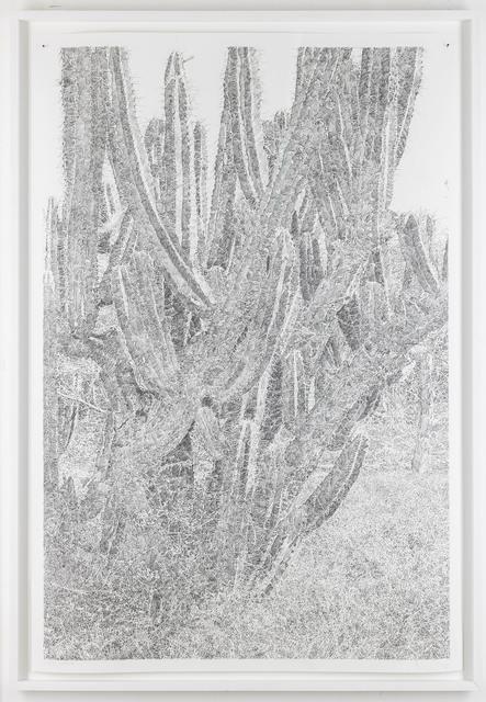 , '1:1 Oaxaca II,' 2018, (re)D. Gallery