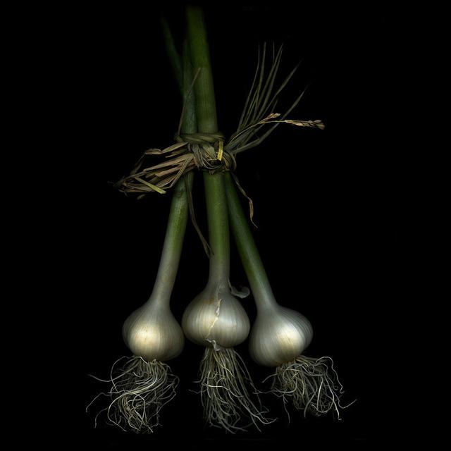, 'Three Garlic (Still Life),' , Carrie Haddad Gallery