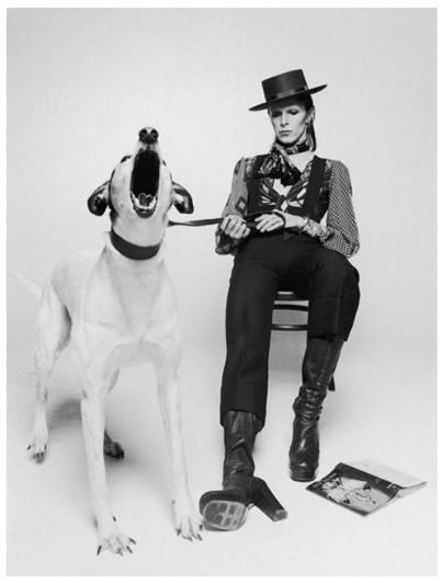 , 'David Bowie, Diamond Dogs (view 2),' 1974, Masterpiece Art