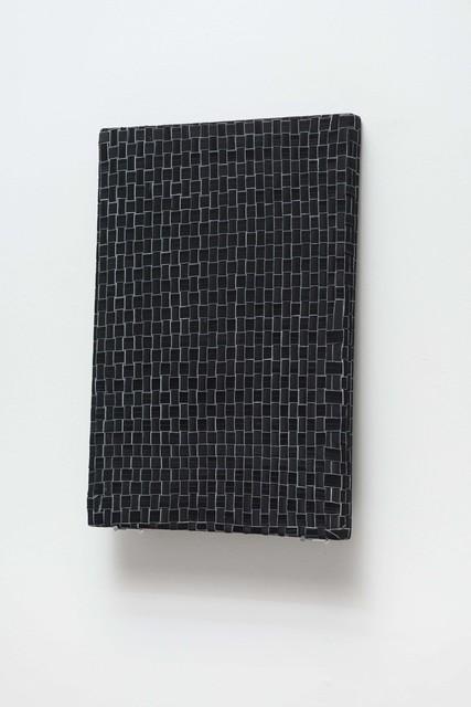 , 'Elastic Drawing,' 2014, Galeria Luisa Strina