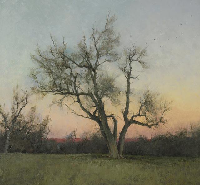 , 'Evening,' , Jonathan Cooper
