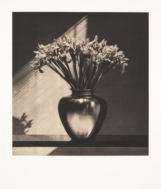 , 'Irises,' 1986, Graphicstudio USF