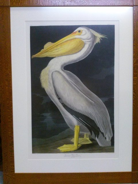 "John James Audubon, 'John James Audubon ""American White Pelican"" rare nocturnal print Oppenheimer Edition', Lions Gallery"