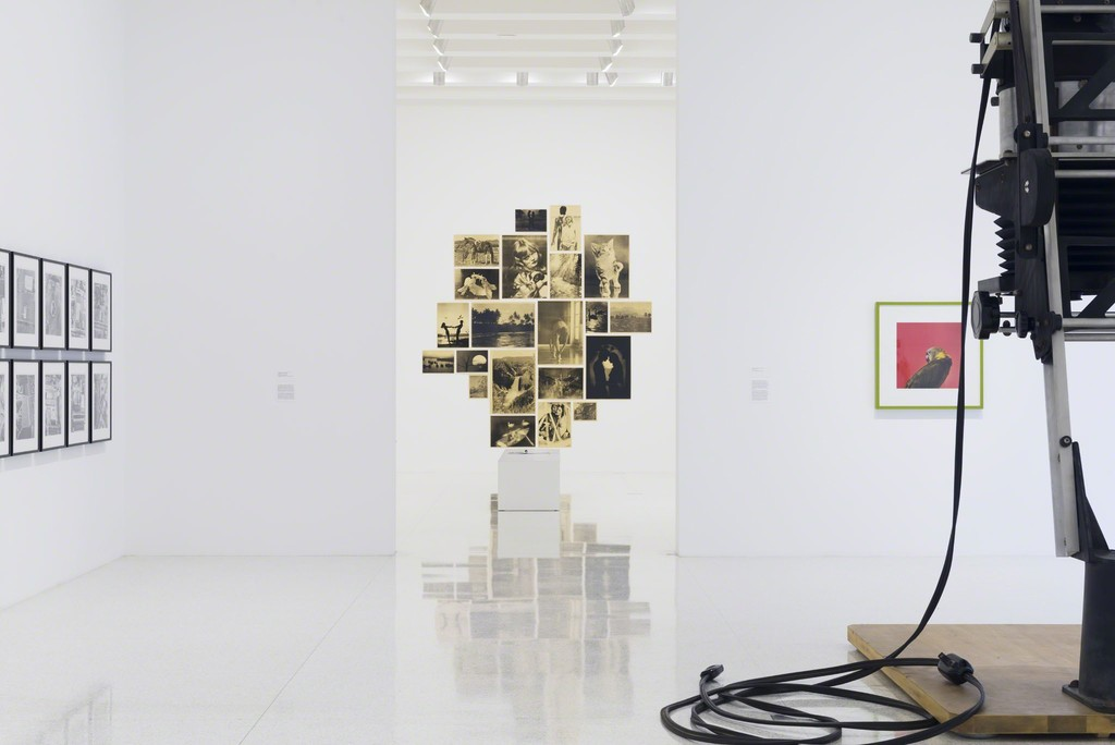 Ordinary Pictures installation view: Photo by Gene Pittman, courtesy Walker Art Center