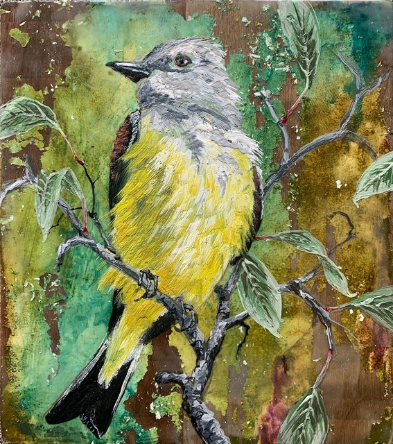 Christopher Reilly, 'Cassin's Kingbird', 2020, Painting, Encaustic & Mixed Media on Panel, Diehl Gallery