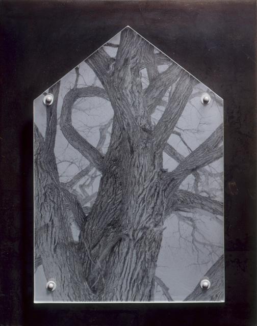 , 'Ghost House/Armor Study: World Tree #2 (pos-rect),' 1995, David Richard Gallery