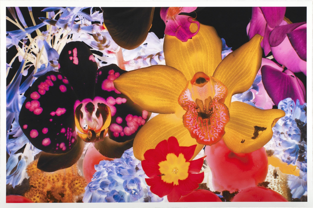 Marc Quinn, 'At the Far Edges of the Universe V', 2010, New Gallery of Modern Art