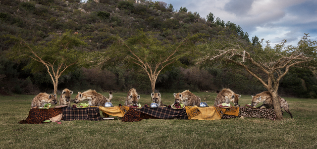 Claire Rosen, 'The Hyena Feast', 2016, Foto Relevance