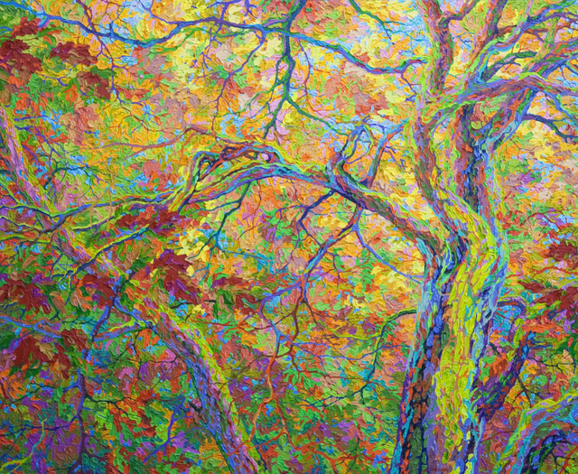Frank Balaam, 'Balaam's Wood Oak Canopy', 2017, Ventana Fine Art