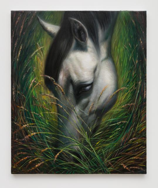 , 'horse (xooo),' 2016, CFHILL