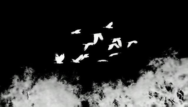 , 'Tracking,' 2010, Ota Fine Arts
