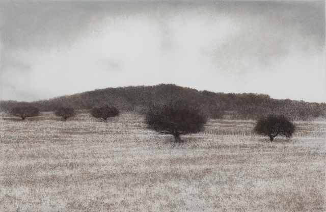 , 'Olive Grove,' 2010, Arco Gallery