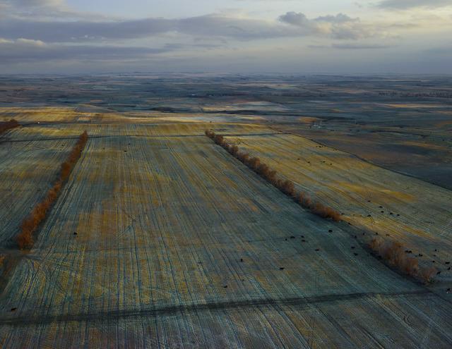 , 'Dusky Fields, McKenzie County, North Dakota,' 2013, Jackson Fine Art