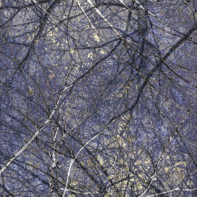 Gwen Laine, 'Topography Series (#3)', 2015, Michael Warren Contemporary