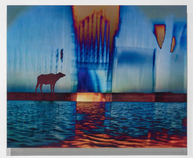 , 'Dawn and Dusk, Mesopotamian Marshes,' , Brian Gross Fine Art