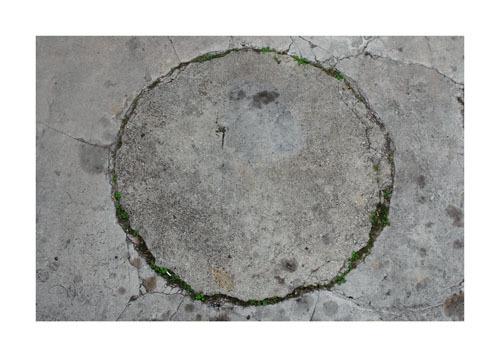 , 'Jardín (Garden),' 2007, Nogueras Blanchard