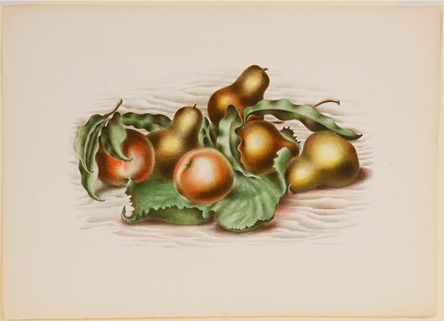 , 'Fruit Forms,' 1935, Sragow Gallery