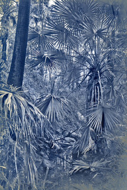 , 'Naturata,' 2015, Sophie Gannon Gallery