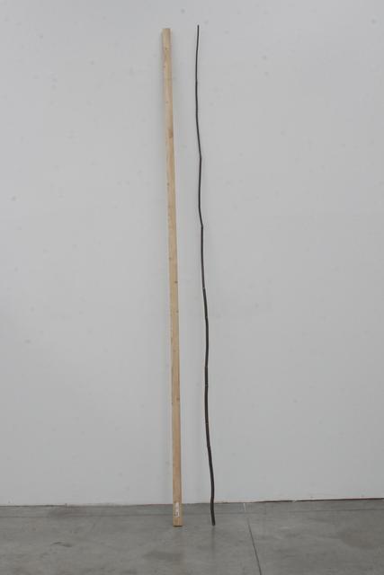 Michele Bernardi, 'Natürliche Linie, künstliche Linie', 2008, Galleria Doris Ghetta