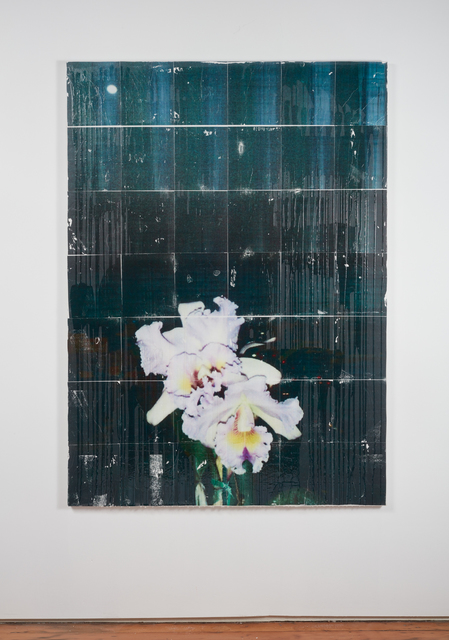 Parker Ito, 'Capitol Records Shit Toots (Cattleya Orchid w/ Moon)', 2016, Team Gallery