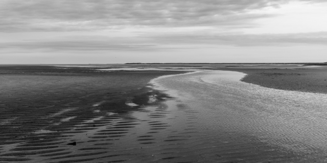 , 'Low Tide, First Encounter,' 2017, Soho Photo Gallery