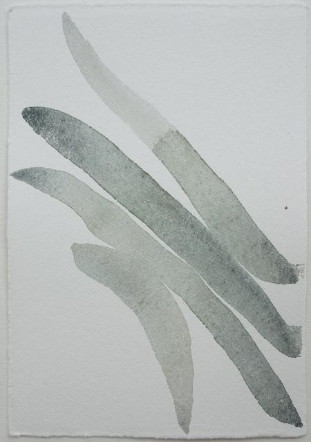 , 'Teresa Pera / Botanics 12; works on paper from the series Caligrafies,' 2017, PontArte