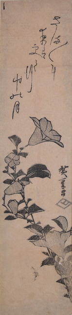 , 'Japanese Bellflower,' ca. 1840, Ronin Gallery