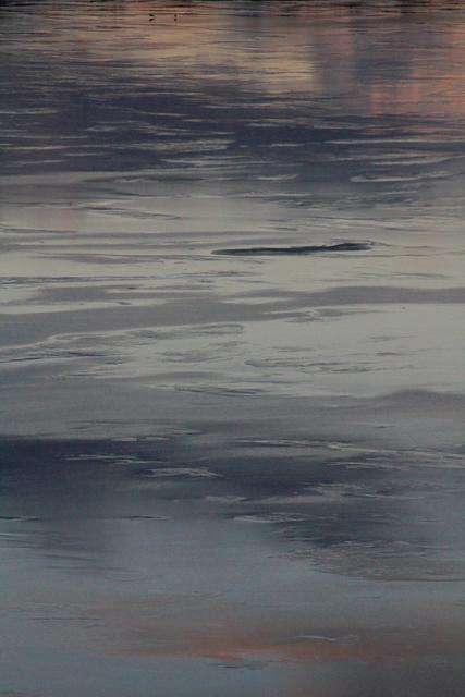 , 'Ice Image #4,' 2018, Fusion Art