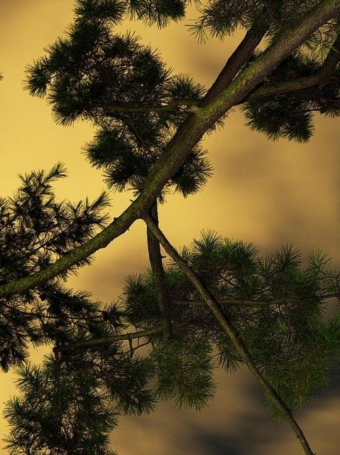 , 'Moon Light 006,' 2014, CHRISTOPHE GUYE GALERIE