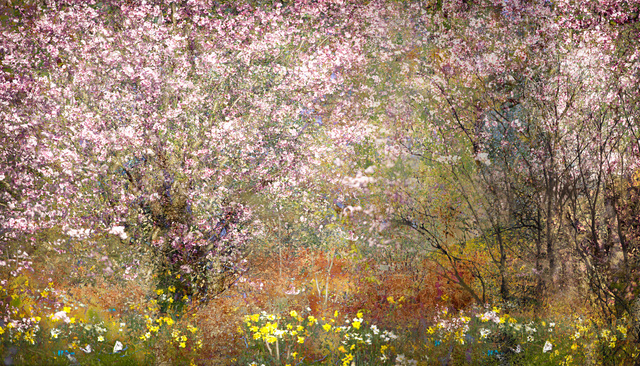 Valda Bailey, 'Extravagant Grace', 2012-2019, Sohn Fine Art