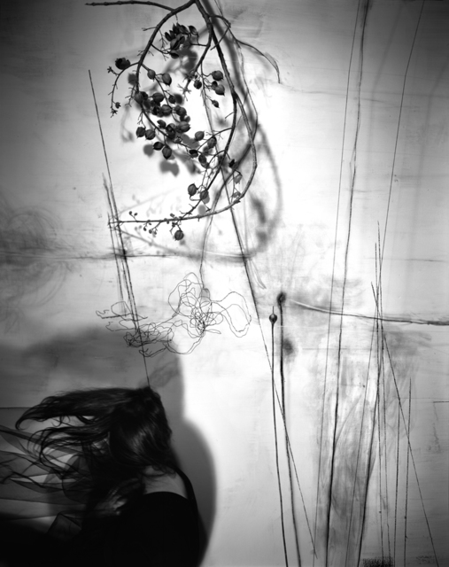 , 'Branches,' 2011, Benrubi Gallery
