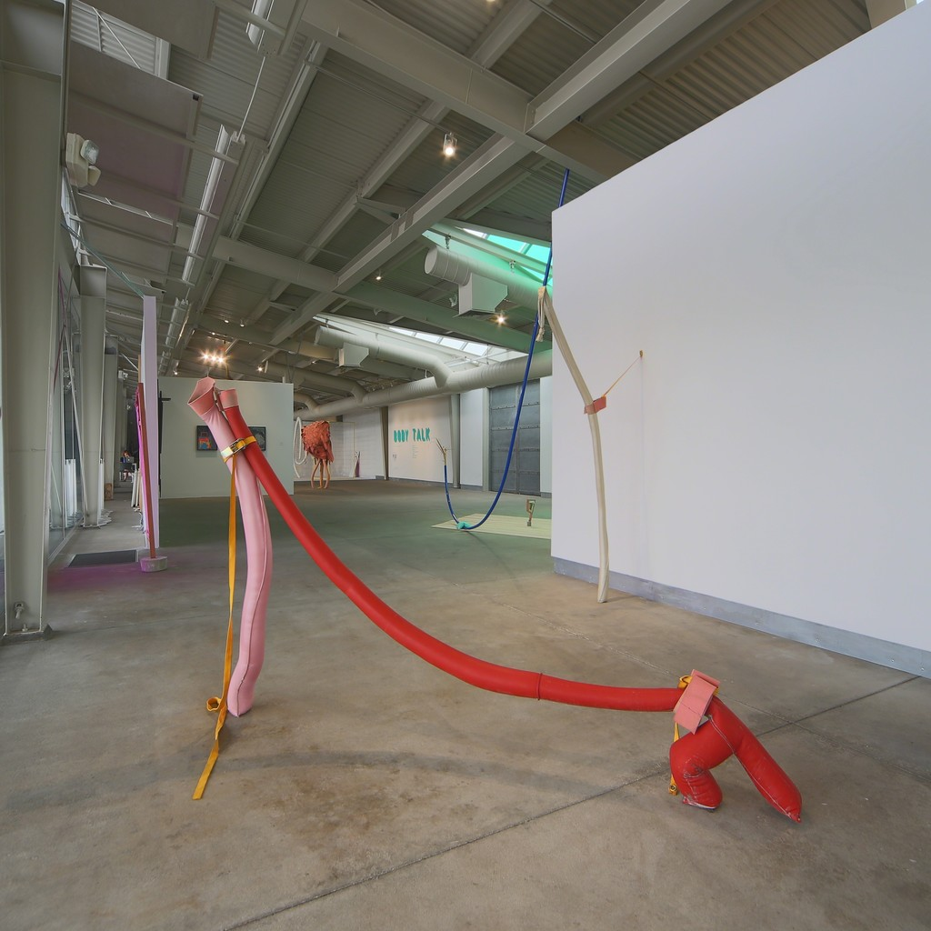 Body Talk installation view, di Rosa, Napa. Photo: Wilfred J. Jones
