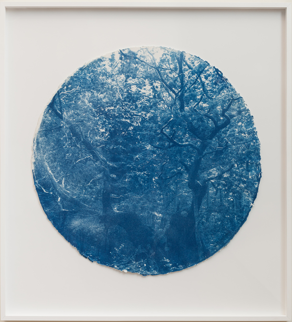 , 'Kongeegan, 15,000 + yrs., (Royal Oak, Denmark),' 2018, Goodwin Fine Art