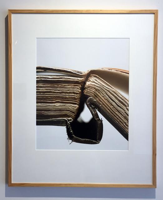 , 'Book 24, Framed,' 2008, Duane Reed Gallery