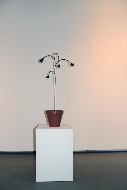 , 'Steckpalme,' , Mario Mauroner Contemporary Art Salzburg-Vienna