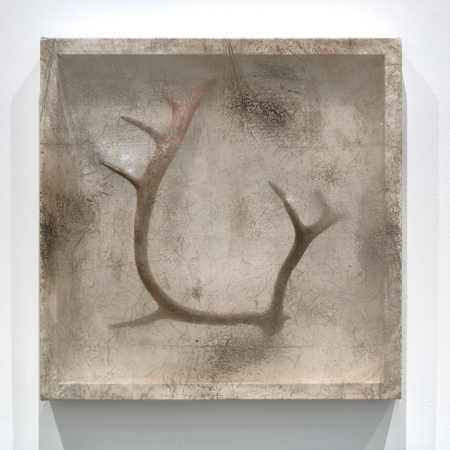 , 'Remnant (Caribou Antler),' 2016, Minus Space