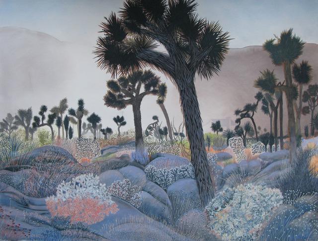 , 'Joshua Tree Sunset,' 2018, Asher Grey Gallery