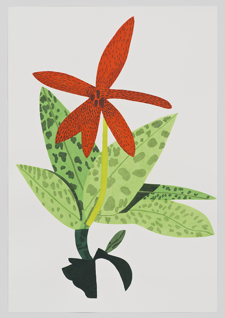 , 'Orange Orchid Clipping,' 2014, David Kordansky Gallery