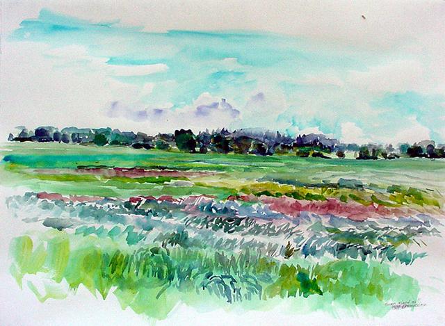 Rebecca Perehudoff, 'Green Field', 1997, Newzones
