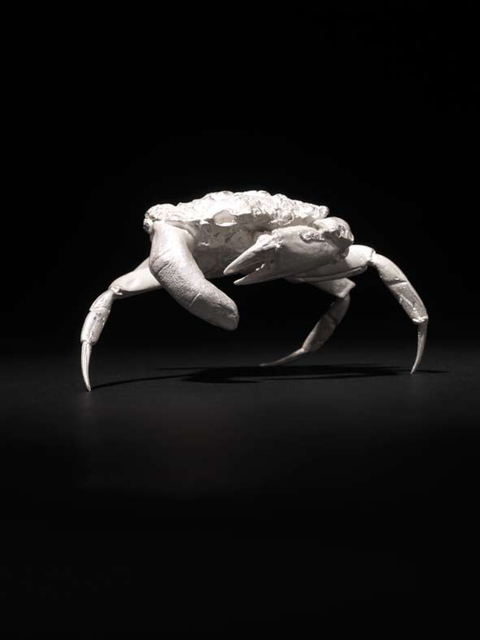 , 'Finger Crab ,' 2011, Kerlin Gallery