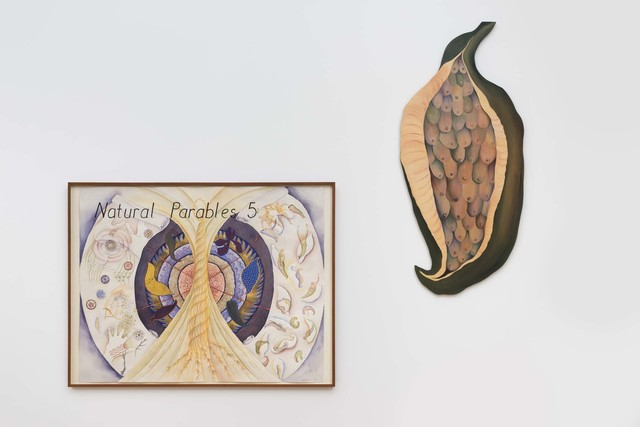 , 'Natural Parables 5,' 1982, Western Exhibitions