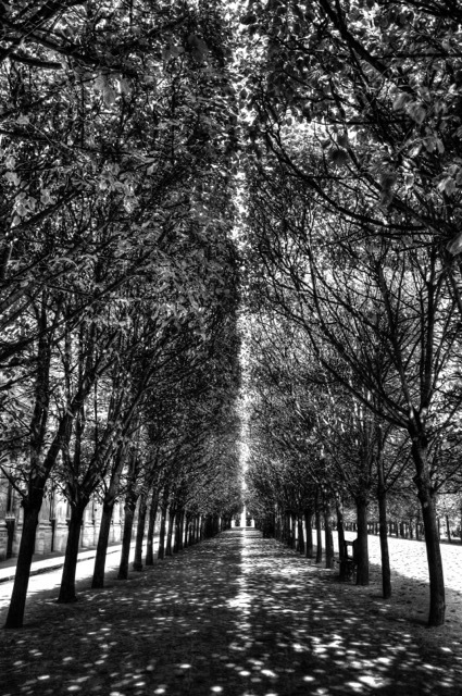 , 'Palais Royal Light, 2014,' 2014, Photo12 Galerie