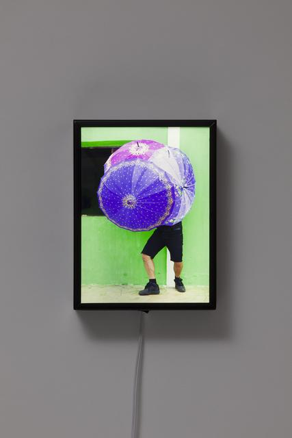 , 'Portrait Bicho da SedaVerde,' 2014, Carbono Galeria